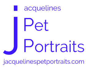 Pet Portraits By Jacqueline